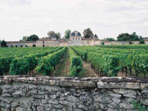 2020 - Conversion en agriculture biologique